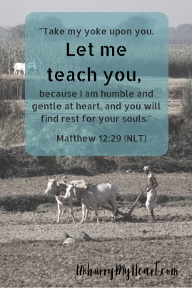 Come to me, all of you who are weary and carry heavy burdens, and I will give you rest...